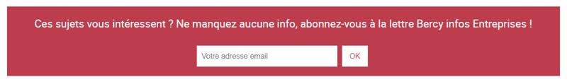 Formulaire d'inscription à la newsletter Bercy infos Entreprises